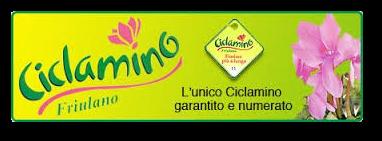 Ciclamino Friulano etichetta