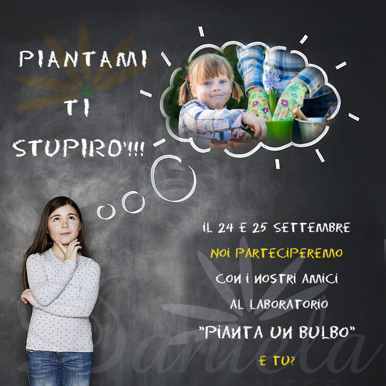 piantami-ti-stupiro