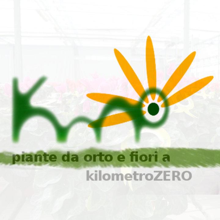 Piante da fiore  a kilometriZERO